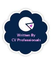 Image of our professional cv writers